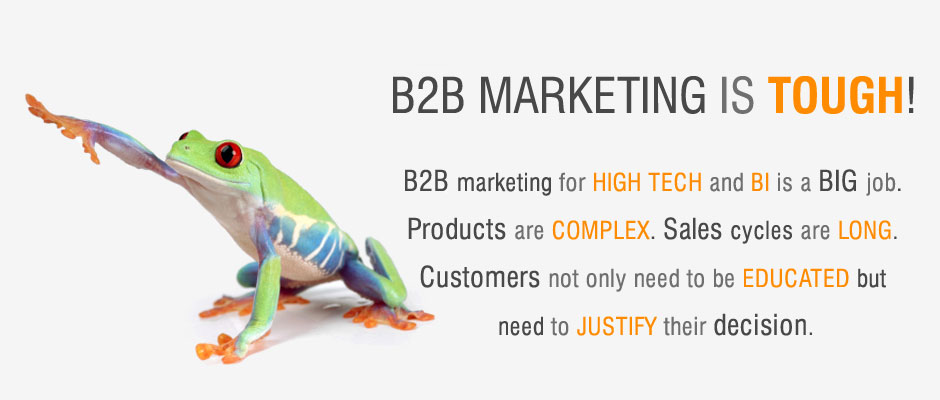 B2B marketing for HIGH TECH and BI is a BIG job.  Products are COMPLEX. Sales cycles are LONG.  Customers not only need to be EDUCATED but  need to JUSTIFY their decision.